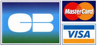 carte bleu visa mastercard